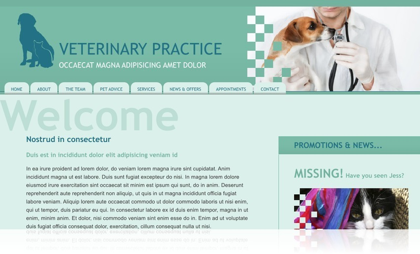 Veterinary Practice 3