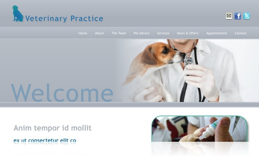 Veterinary Practice 5