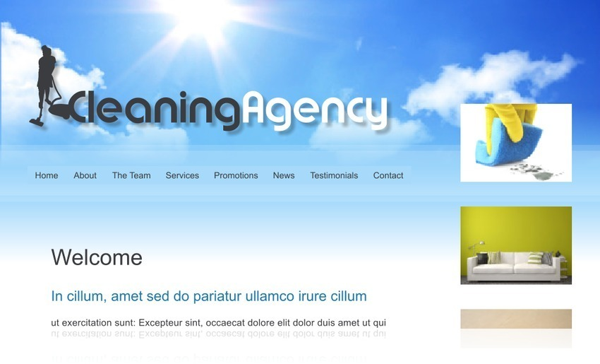 Cleaning Agency 2