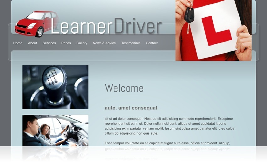 Driving Instructor 1