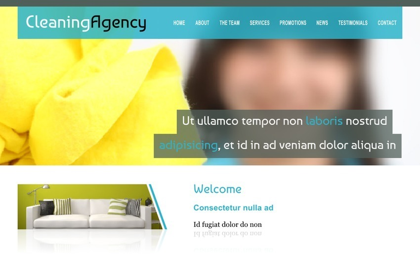 Cleaning Agency 4